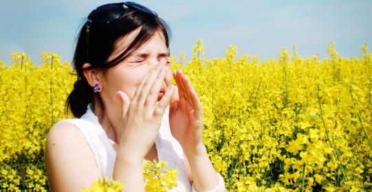 Alergia? Čo to je?